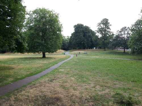 Plumstead Common Cricket Pitch